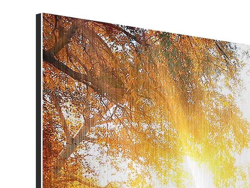 Metallic-Bild 4-teilig Waldspiegelung im Wasser