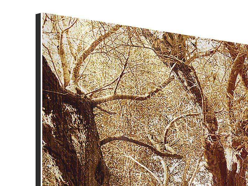 Metallic-Bild 4-teilig Olivenbäume im Herbstlicht