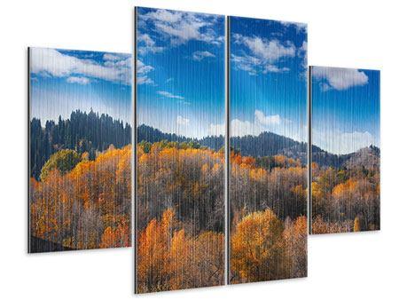 Metallic-Bild 4-teilig Wolken ziehen auf