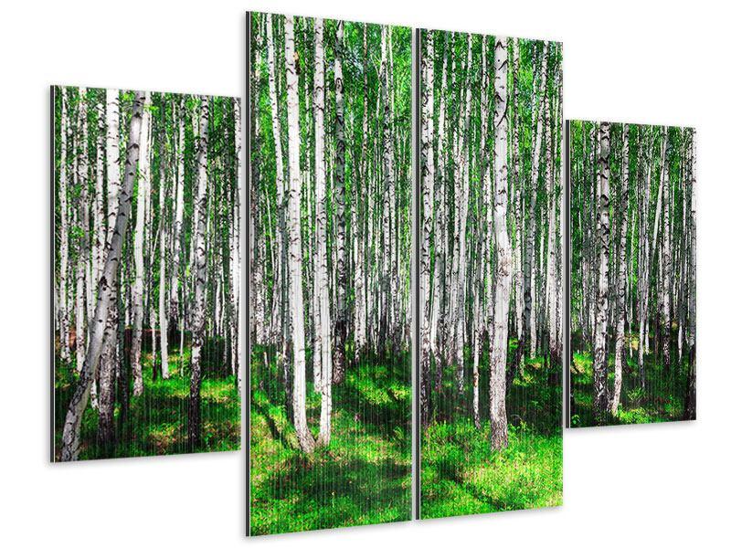 Metallic-Bild 4-teilig Sommerlicher Birkenwald