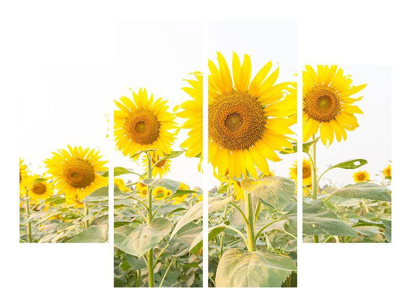 Metallic-Bild 4-teilig Das Sonnenblumenfeld