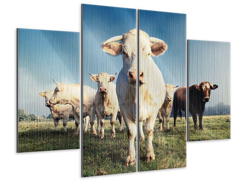 Metallic-Bild 4-teilig Kühe