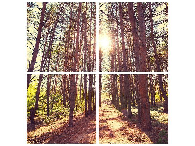 Metallic-Bild 4-teilig Licht am Ende des Waldweges