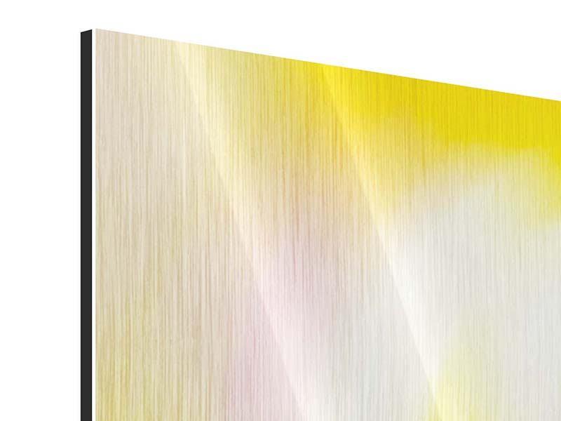 Metallic-Bild 4-teilig Abstrakte Farbkreise