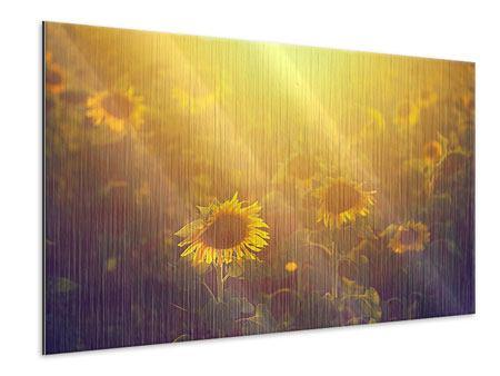 Metallic-Bild Sonnenblumen im goldenen Licht