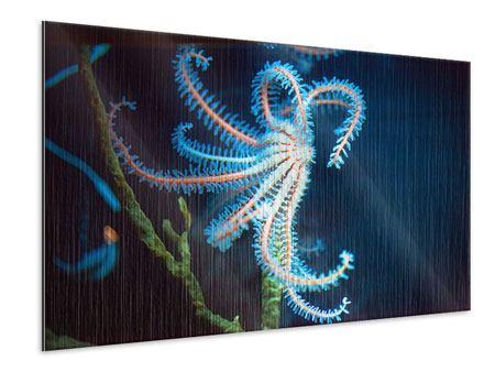 Metallic-Bild Aquarium