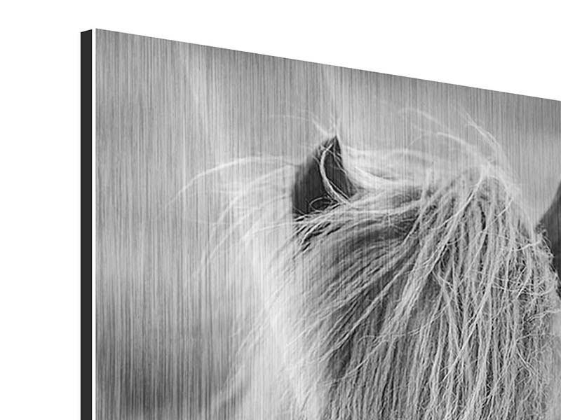 Metallic-Bild Da Steht Ein Pferd Auf`m Flur