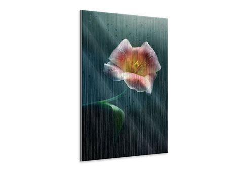 Metallic-Bild Die geöffnete Tulpe