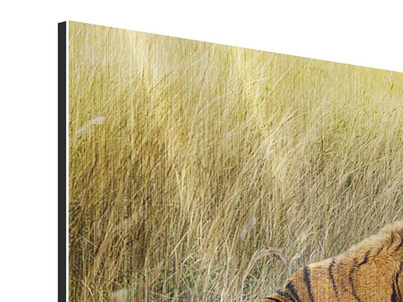 Metallic-Bild Der Tiger