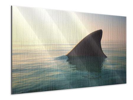 Metallic-Bild Haifischflosse