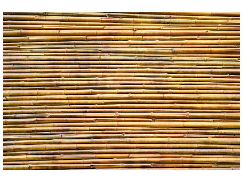 Metallic-Bild Bambus