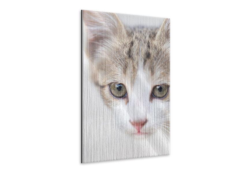 Metallic-Bild Katzenkind