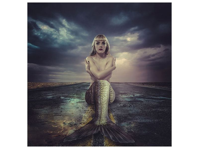Metallic-Bild Gestrandete Meerjungfrau