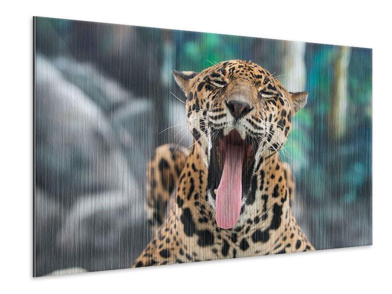 Metallic-Bild Leopardenkopf