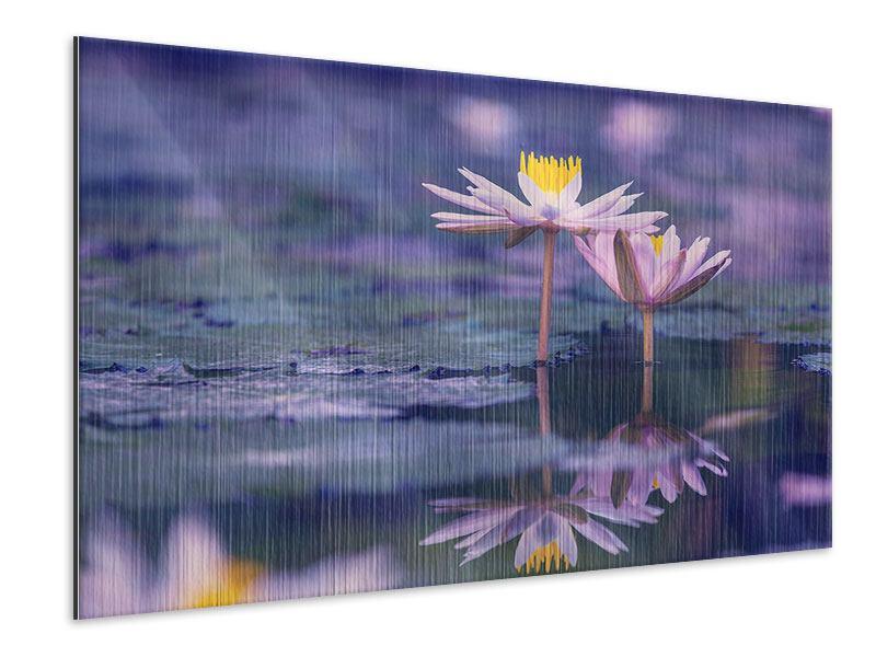 Metallic-Bild Lotus Duo im Sonnenaufgang