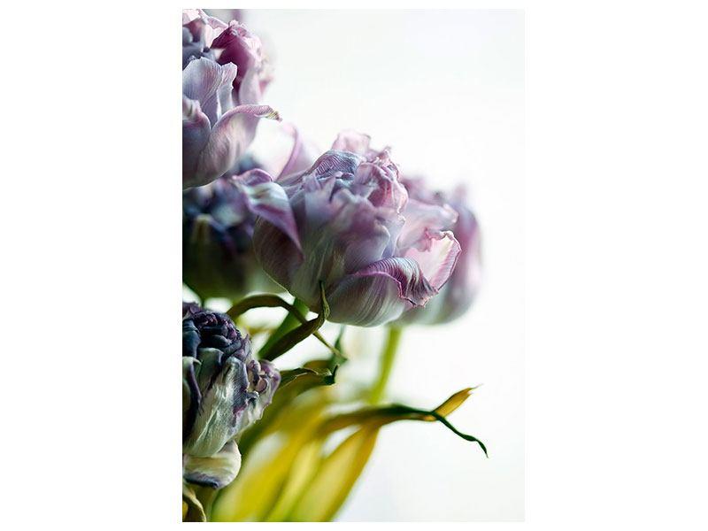 Metallic-Bild Der Tulpenstrauss