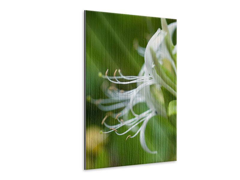 Metallic-Bild Makro Blüte