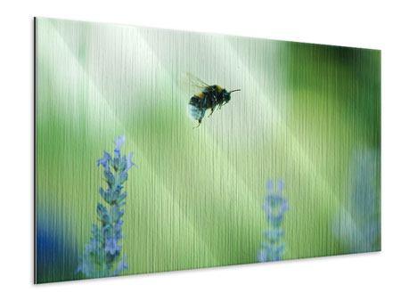 Metallic-Bild Die Biene