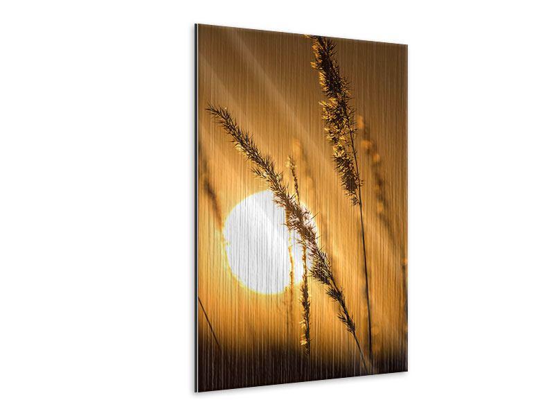 Metallic-Bild Romantischer Sonnenuntergang