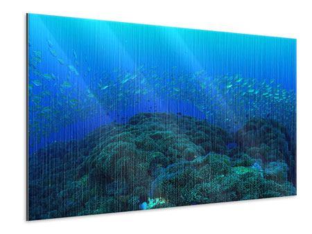 Metallic-Bild Fischschwärme