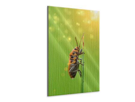 Metallic-Bild Das Insekt