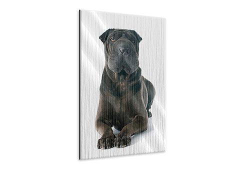 Metallic-Bild Der Mastiff