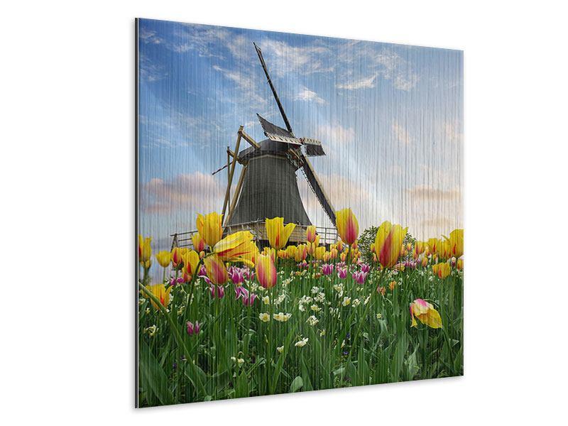 Metallic-Bild Die Windmühle mit den Tulpen