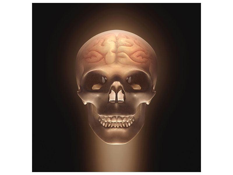 Metallic-Bild Schädel