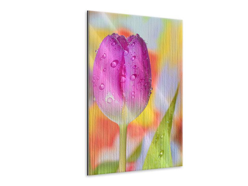 Metallic-Bild Die Tulpe im Morgentau