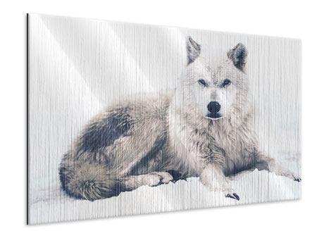 Metallic-Bild Der Wolf