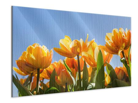Metallic-Bild Märchenhafte Tulpen
