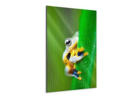 Metallic-Bild Der Frosch