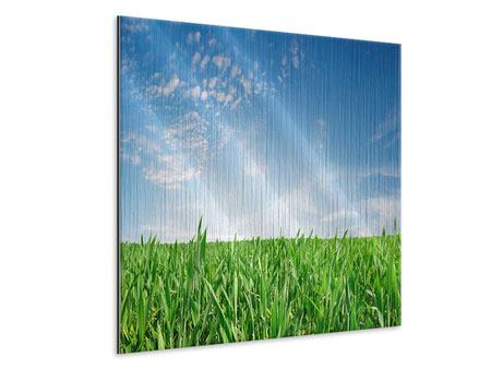 Metallic-Bild Das Gras