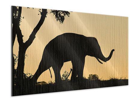 Metallic-Bild Elefant an der Wand