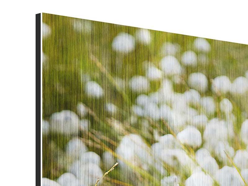 Metallic-Bild Die Wiese der Baumwolle