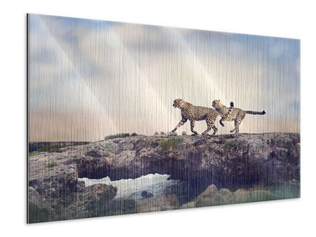 Metallic-Bild Zwei Geparden