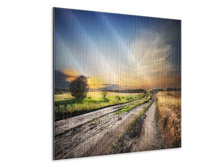 Metallic-Bild Sonnenaufgang am Feld