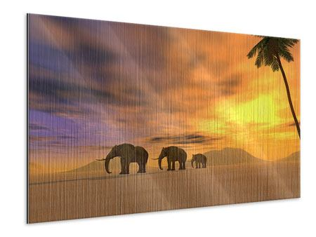 Metallic-Bild Wüstenelefanten