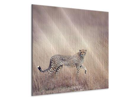 Metallic-Bild Gepard