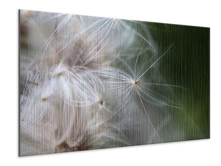 Metallic-Bild Close up Blütenfasern