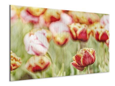 Metallic-Bild Die Schönheit der Tulpe