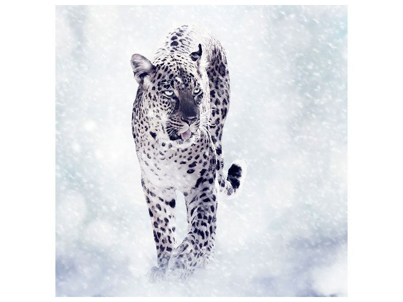 Metallic-Bild Der Leopard