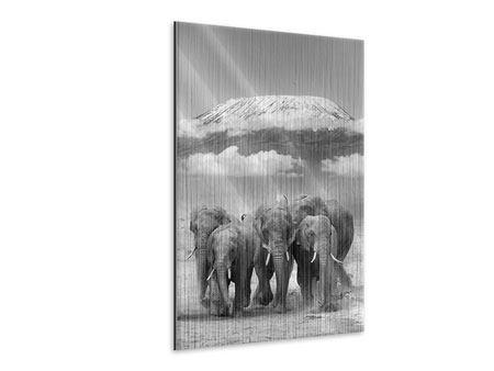 Metallic-Bild Elefantenherde