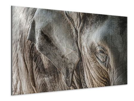 Metallic-Bild Close Up Elefant