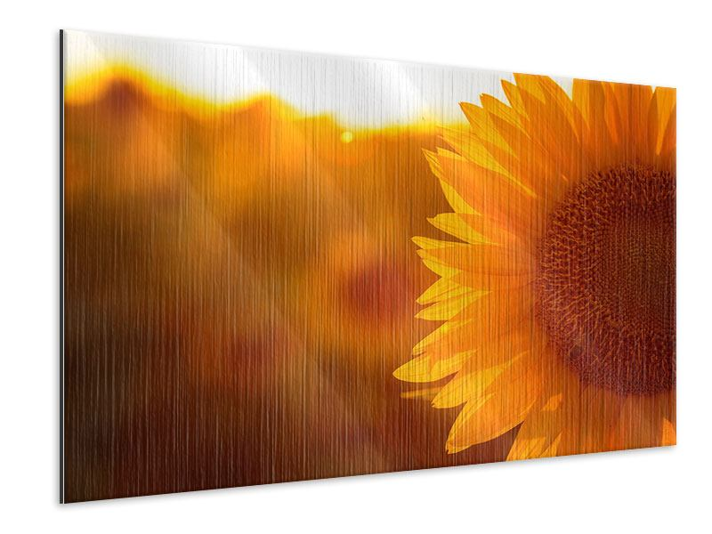 Metallic-Bild Macro-Sonnenblume
