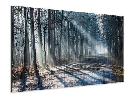 Metallic-Bild Wald im Lichtstrahl