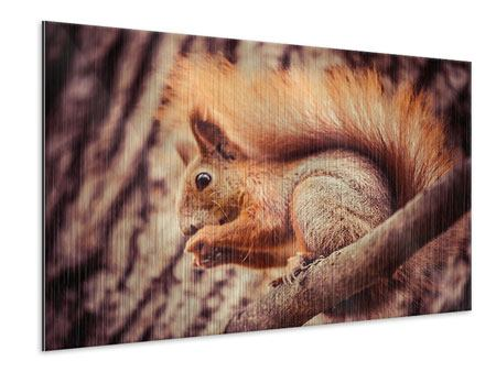 Metallic-Bild Eichhörnchen