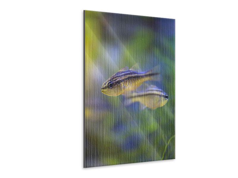 Metallic-Bild Fischpaar