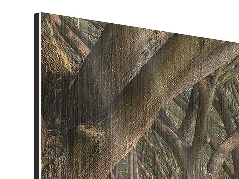 Metallic-Bild Alter Baumbestand