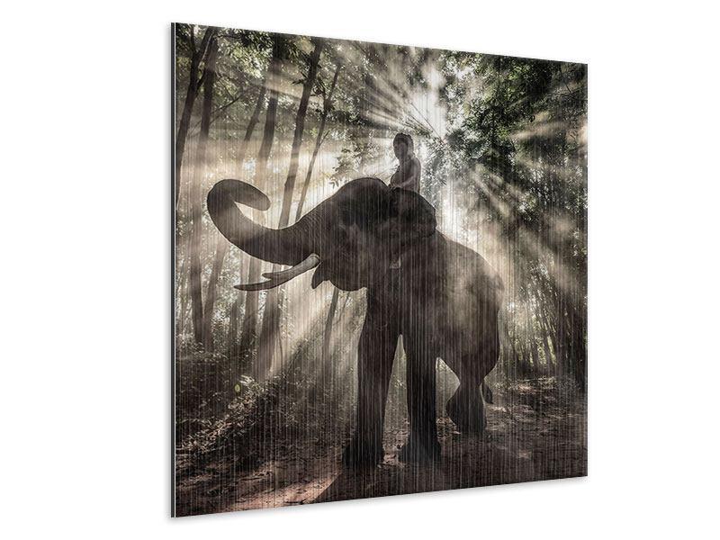 Metallic-Bild Der Elefant